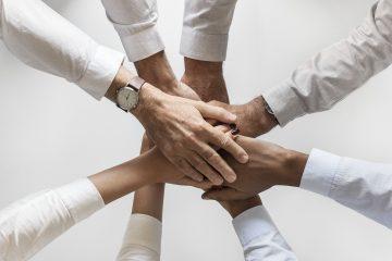השמת בכירים, משימה למקצוענים